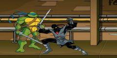 Ninja Kaplumbağa Dövüş Resmi Resim